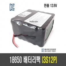 18650 배터리 팩(3S12P)